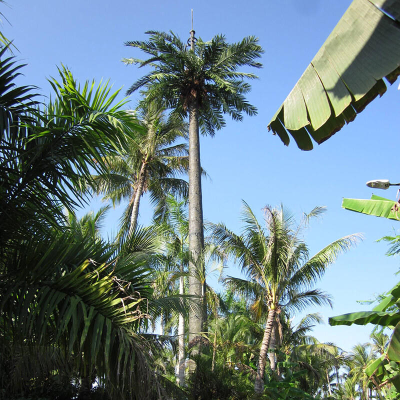 Bionic tree tower, Disguised palm tower