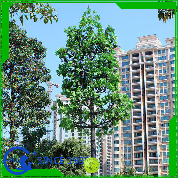 elegant cell tower tree ideal for mobile phone signals