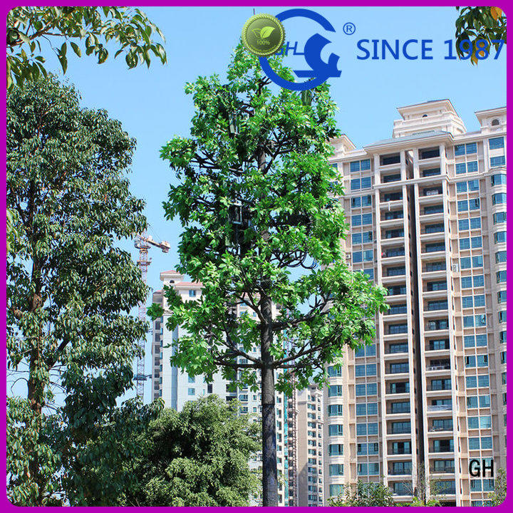 GH cell tower tree with good quality for mobile phone signals