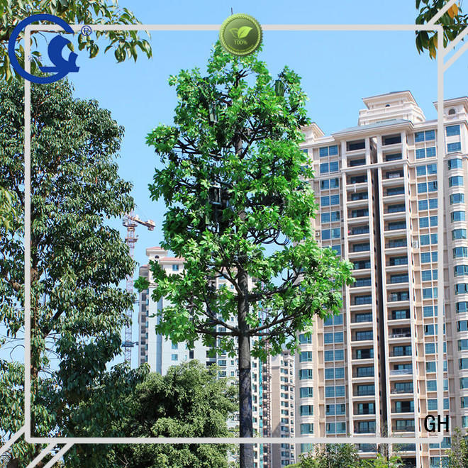 GH cell tower tree ideal for mobile phone signals